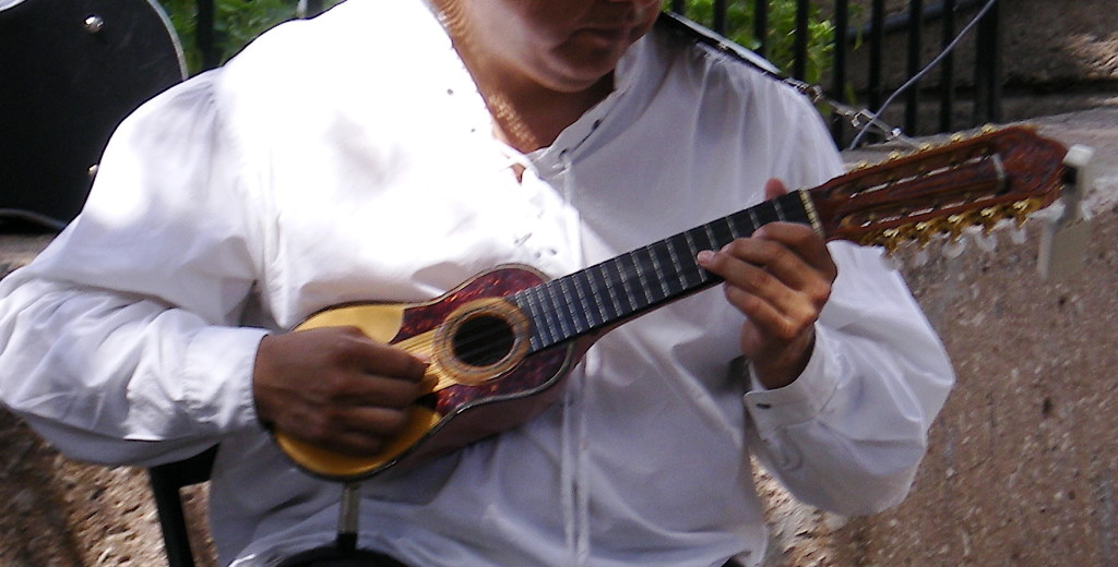 Charango_player